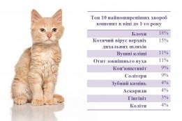ТОП 10 хвороб кошенят в віці до 1-го року